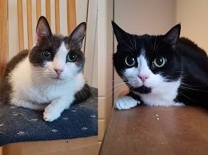Nevin ja Martti, Sipoo